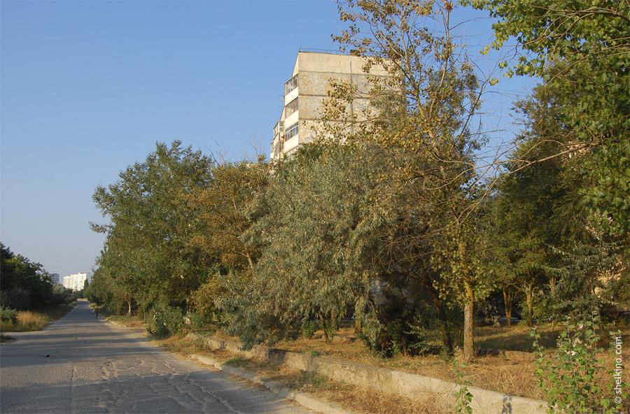 Щелкино, дом 14, вид с востока, со стороны окраинной дороги