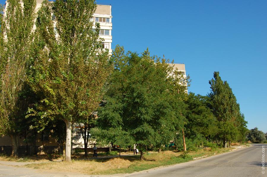 Щелкино, дома 36 и 34. Вид с восточной стороны, с окраинной дороги. Слева дом 36, по центру кадра 34.