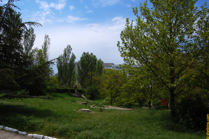 Щелкино 2008