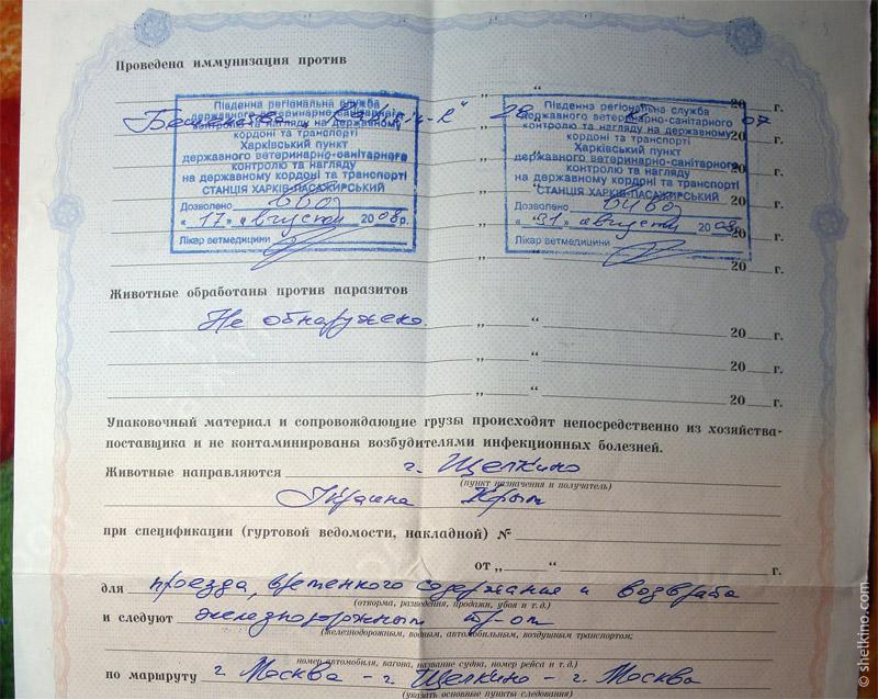 Провоз собаки на Украину. В Щелкино.